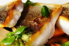 verve-rally-gourmet-food
